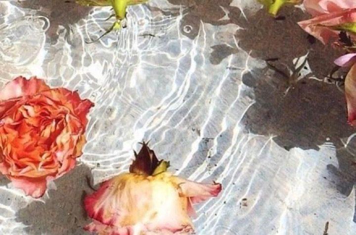 Flower power: i cosmetici con i fiori infusi