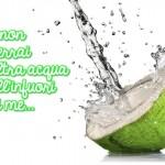 Acqua di cocco: 10 buoni motivi per non bere altro