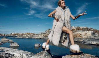 Nordic Beauty: ecco i brand da non lasciarsi scappare