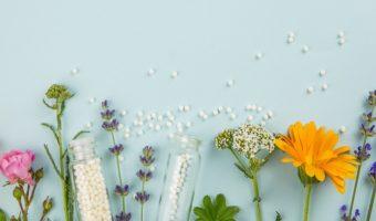 piante per sistema immunitario